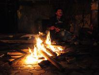 HN: Dựng lều, đốt lửa ở vỉa hè trông đào, quất trong đêm lạnh