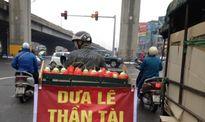Dưa lê thần tài Trung Quốc giá bèo, bán rong vỉa hè