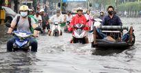 Đón Tết: miền Nam ngập lụt, ngoài Bắc nắng hanh