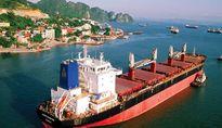 WTO, TPP và sau đó