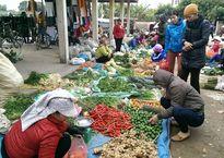 20.000 đồng một củ su hào bằng nắm tay ở chợ quê ngày 29 Tết
