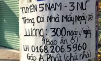 Giữ nhà thuê trong ngày tết ở Sài Gòn