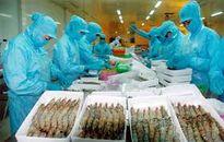 Xuất khẩu tôm sang thị trường Mỹ nhiều khởi sắc