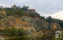 """Chuyện những con khỉ """"nương náu"""" cửa Phật ở ngôi chùa hơn 300 năm tuổi"""