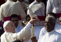 Giáo hoàng Francis gửi thông điệp về khủng hoảng Syria