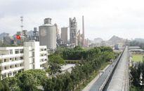 VICEM Hoàng Thạch đẩy mạnh KHCN, nâng cao năng suất chất lượng mừng xuân mới