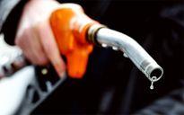 Nhiều triển vọng cho thị trường xăng dầu năm 2016
