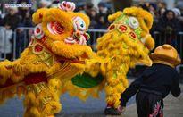 Người châu Á múa lân, rồng mừng năm mới ở Mỹ