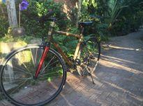 Xe đạp tre Việt: Hàng hiệu 100 triệu của tay chơi EU
