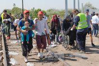 Châu Âu đón mùa Xuân trong rối ren khủng hoảng