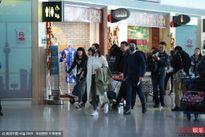 Dương Mịch, Lưu Khải Uy xuất hiện chung tại sân bay