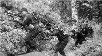 """Cuộc đấu súng giữa đại ngàn bắt tướng cướp tự xưng là """"chúa tể rừng xanh"""""""