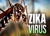 Những điều không thể bỏ qua về virus Zika
