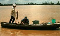 Sông Tiền mùa hái lộc giời