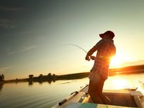 'Bùa câu cá' của Vũ Đức Sao Biển