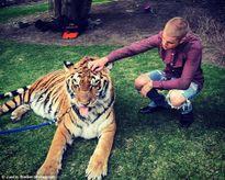 Justin Bieber tung ảnh vờn hổ, tổ chức PETA nói 'may mà không bị xé toạc họng'