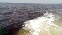 Vệt nước nâu sẫm kéo dài 10 km trên biển Hà Tĩnh