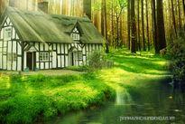 Nhà gần, nhà xa