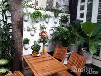 Góc cà phê lý tưởng ngay trong sân nhà của cặp vợ chồng Sài Gòn