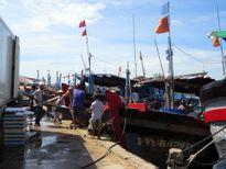Vật vã thông luồng cảng cá ngừ Tuy Hòa