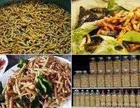 Địa điểm ăn vặt ở Điện Biên