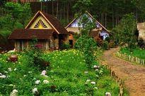 Ngôi làng đẹp không kém những câu chuyện cổ tích ở ngay Đà Lạt