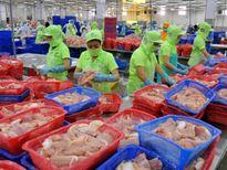 Kiểm tra toàn bộ các lô hàng cá da trơn xuất khẩu vào Hoa Kỳ