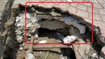 Phát hiện nhiều vết nứt dưới trụ của cây cầu thuộc dự án nghìn tỉ