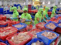Từ 15/7, kiểm tra 100% lô hàng cá da trơn xuất khẩu vào Mỹ