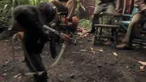 Chuyện gì sẽ đến khi khỉ được cầm AK?