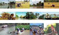 Phó Thủ tướng đặt 'bài toán' phát triển bền vững cho ĐBSCL