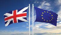 Brexit khiến tỷ giá biến động, nhưng vẫn trong biên độ cho phép