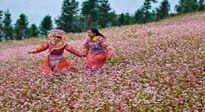 Lễ hội hoa tam giác mạch và Ngày hội văn hóa dân tộc Mông toàn quốc lần thứ II