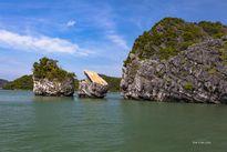 Thiên Nga trên Vịnh Hạ Long chính thức 'cụt đầu'