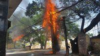 Cột điện bất ngờ bốc cháy khiến người dân hoảng loạn