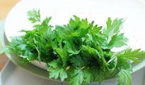 Tác dụng chữa bệnh của các loại gia vị có sẵn trong bếp