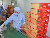 Ưu tiên phát triển nguồn dược liệu trong nước để sản xuất thuốc