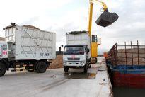 Bộ GTVT gỡ khó DN xuất khẩu dăm gỗ vướng quy định 'máy móc' của Đăng kiểm