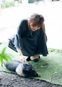 Tin showbiz, sao Việt 23/7: Hari Won vuốt ve lợn, đá xéo dư luận