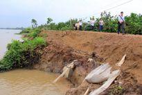 Liên tiếp xảy ra sạt lở bờ sông tại Đồng Tháp gây thiệt hại lớn