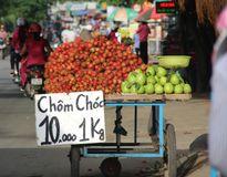 TP.HCM: Trái cây vỉa hè giá rẻ như cho nhưng vẫn ế