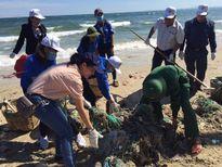 1.000 người tham gia làm sạch biển ngày Chủ nhật xanh