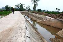 Siết công tác đấu thầu dự án nông nghiệp nông thôn