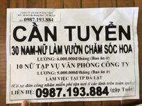 Lấy địa chỉ của… trụ sở UBND tỉnh làm nơi tuyển dụng lừa đảo?