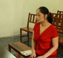 Lừa đảo, Hoa hậu Quý bà lãnh 15 năm tù