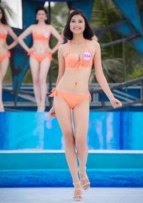 Thí sinh Hoa hậu Việt Nam được so sánh với Tăng Thanh Hà