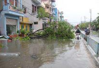 Tỉnh Hưng Yên mất điện trên diện rộng sau cơn bão số 1