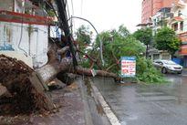 Hải Phòng: Hư hại 400 m đê biển do bão số 1