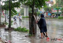 Hà Nội tan hoang sau bão số 1