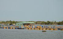 Nhà hàng bè cá tự phát trên sông do buông lỏng quản lý?